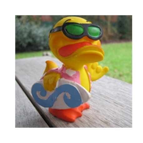 Surf duck Lanco  Lanco