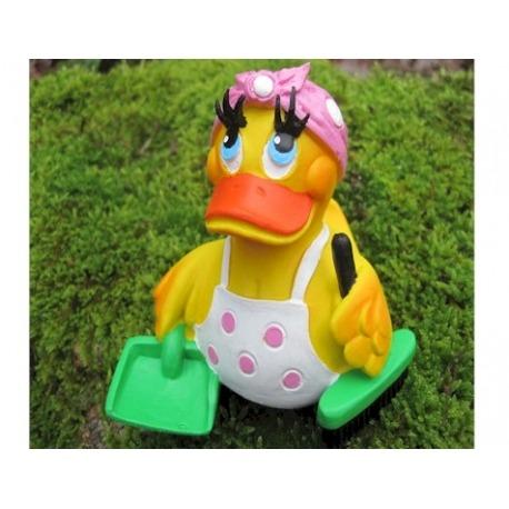 Cleaning lady duck Lanco  Lanco