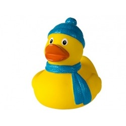Badeente winter DR