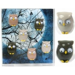 Mini fridge magnets owl