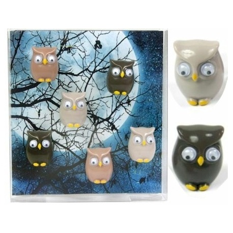 Mini fridge magnets owl  Magnets