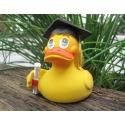 Diploma  duck Lanco