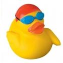 Badeend zwemmer DR
