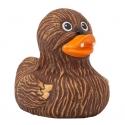 Badeend Whooping Duck  LILALU