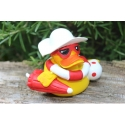 Beach duck Lanco