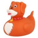 Rubber Duck dog LILALU