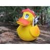 Pirate duck Lanco