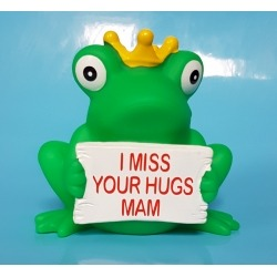 Frog crown with greeting sign with name or text  Home