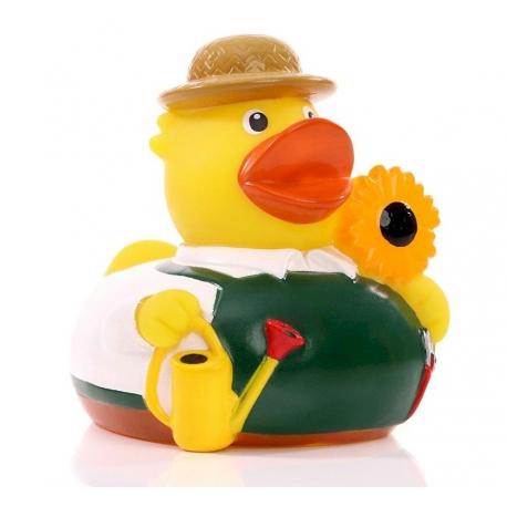 Rubber duck gardner DR  Profession ducks